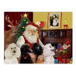 Santa's Poodles (St+T) Postcards