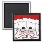 Santa's Sweet Cheeks! Magnet