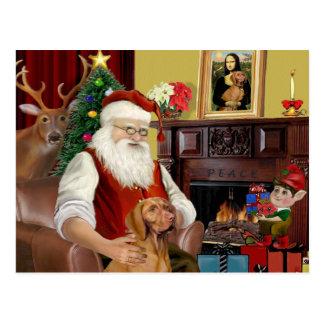 Santa's Vizsla Postcard