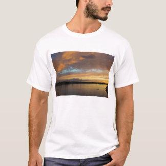 Sante Fe, Argentina T-Shirt