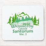 Santorun WASHINGTON Mousepads