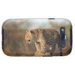 Santuario de fauna de Harnas, Namibia Samsung Galaxy S3 Cárcasa