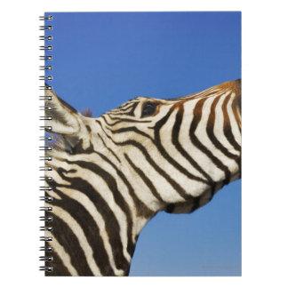 Santuario de fauna de Harnas, Namibia, meridional Libreta
