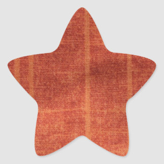 Sanyasi Star Sticker