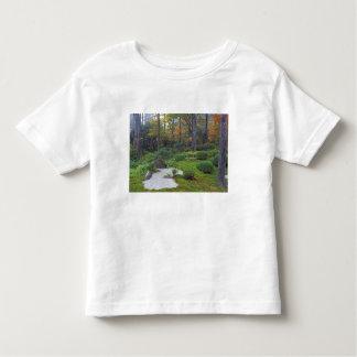 Sanzen-in Temple, Ohara, Kyoto, Japan 2 Toddler T-shirt