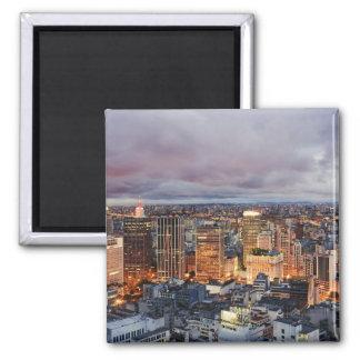 Sao Paulo Cityscape Magnet
