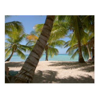 Saona Island Dominican republic post card