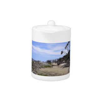Sapelo Island Beach Teapot