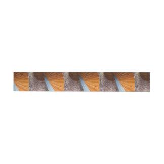 Sapelo Staircase Wrap Around Address Label