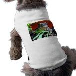 Sapo de Great Plains Ropa Para Mascota