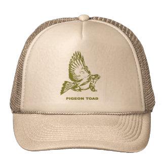 Sapo de la paloma gorra