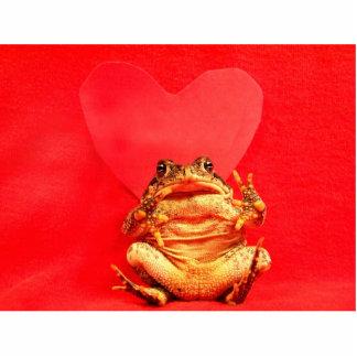 Sapo de la rana delante de la foto roja del corazó esculturas fotográficas