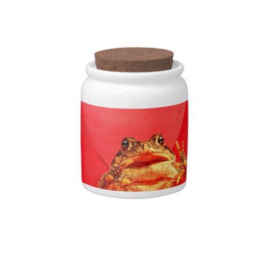 Sapo de la rana delante de la foto roja del corazó jarra para caramelo