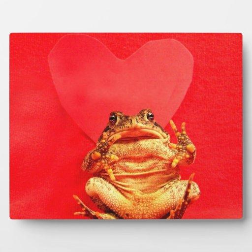 Sapo de la rana delante de la foto roja del corazó placas con fotos
