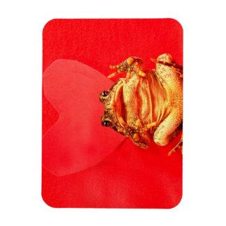 Sapo de la rana delante de la foto roja del corazó rectangle magnet