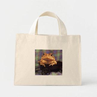 Sapo de la rana en carro negro con el fondo de la bolsas