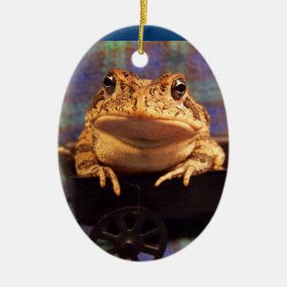 Sapo de la rana en carro negro con el fondo de la adorno ovalado de cerámica