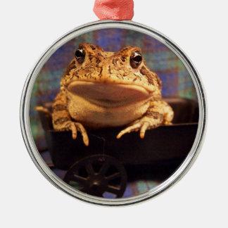 Sapo de la rana en carro negro con el fondo de la adorno redondo plateado