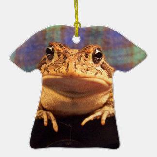 Sapo de la rana en carro negro con el fondo de la adorno de cerámica en forma de camiseta