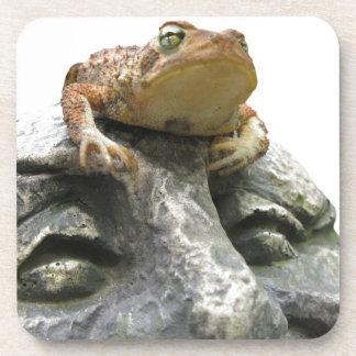 Sapo en roca feliz de la cara del jardín posavasos