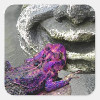 Sapo que se besa púrpura pegatina cuadrada