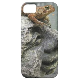 Sapo tonto fresco iPhone 5 Case-Mate funda