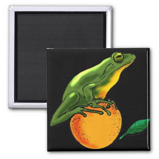Sapo y naranja verdes imanes de nevera