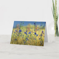 Sapphire & Gold Card