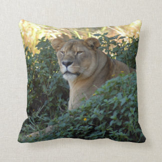 sarabi-set-1-003 pillow