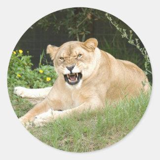 sarabi-set-1-013 round sticker
