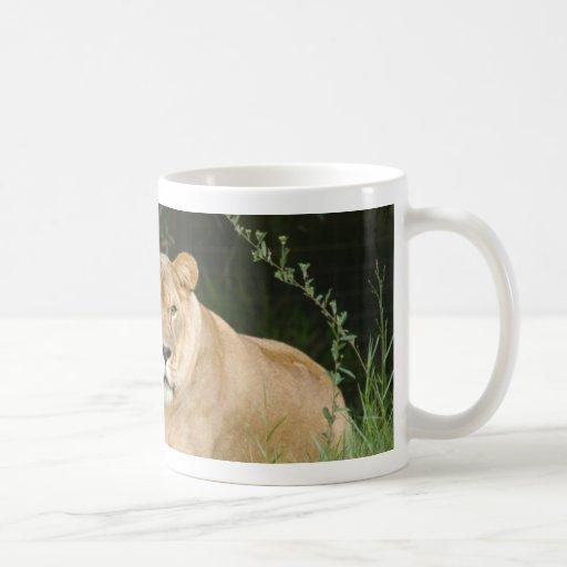 sarabi-set-1-014 coffee mug