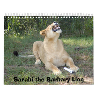 sarabi-toy-003, Sarabi the Barbary Lion Calendar