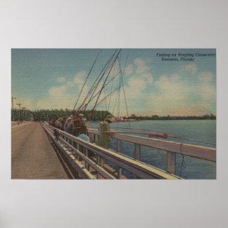 Sarasota, FL - opinión la gente que pesca apagado Póster