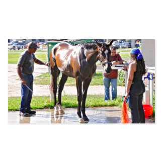 Saratoga - Horse Haven Business Card