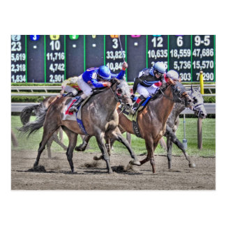 Saratoga Horse Racing Post Card