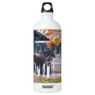 Saratoga in the Fall Aluminum Water Bottle