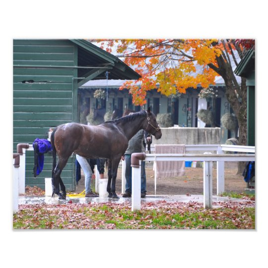 Saratoga in the Fall Photo Print