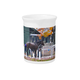 Saratoga in the Fall Drink Pitcher
