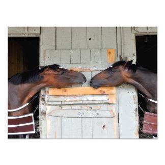 Saratoga Love Photo Print