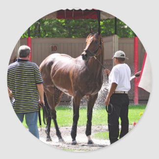 Saratoga Mornings in the Paddock Classic Round Sticker