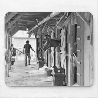 Saratoga Shedrow en el asilo del caballo Tapetes De Raton