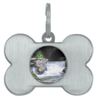 Saratoga Spa State Park-Geyser Creek Pet ID Tag