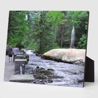 Saratoga Spa State Park-Geyser Creek Plaque