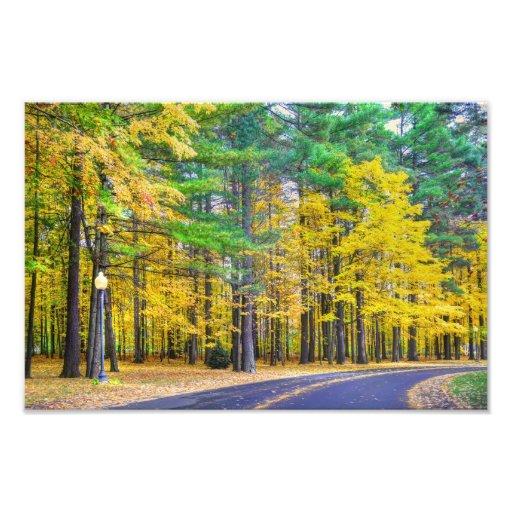 Saratoga Springs in the Fall Photo Print