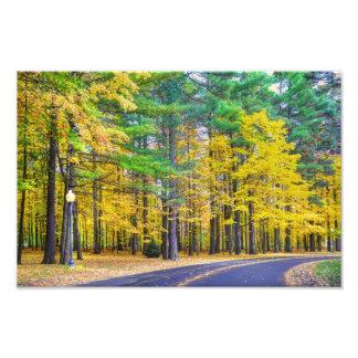 Saratoga Springs in the Fall Art Photo