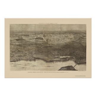Saratoga Springs mapa panorámico de NY - 1874 Poster