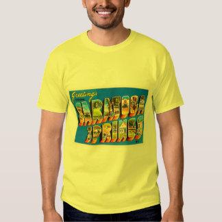 Saratoga Springs New York NY Old Travel Souvenir Tee Shirt