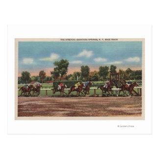 Saratoga Springs NY - Horse Race Track Scene Postcard