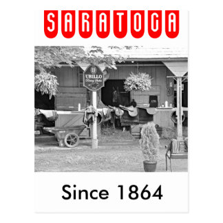 "Saratoga Stables ""Horse Haven"" Postcard"