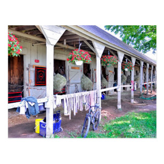 "Saratoga Stables ""Horse Haven"" Postcard"